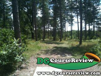 Bunker hills in andover mn disc golf course review for Home and landscape design andover mn